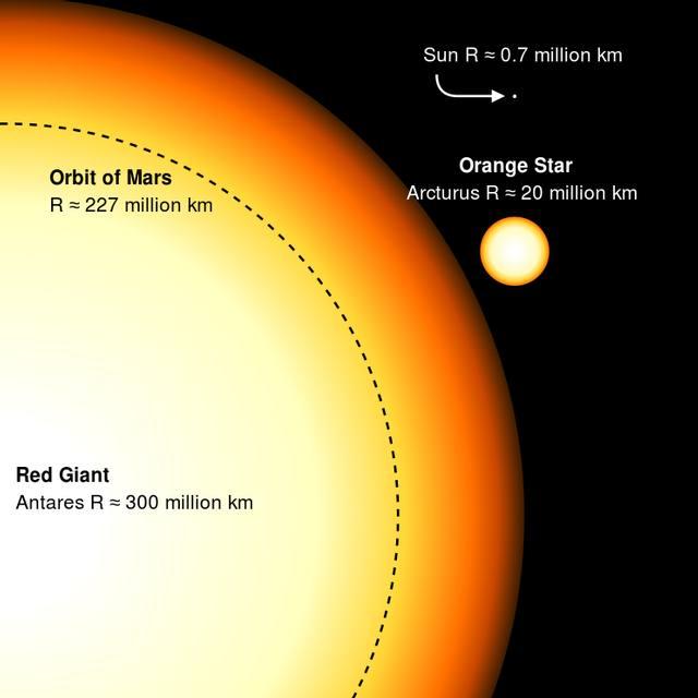 Comparación de tamaños entre Antares, Arturo y el Sol. El círculo negro representa el tamaño de la órbita de Marte.