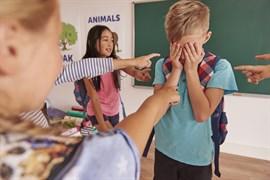 Cómo abordar una situación de acoso escolar
