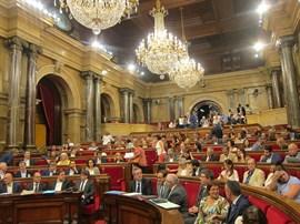 Forn reitera que los Mossos garantizarán el voto