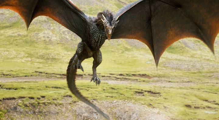 got-dragon1