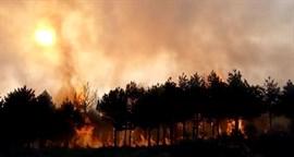 El Gobierno destina más de 2,10 millones a actuaciones para reparar daños por incendios y temporales