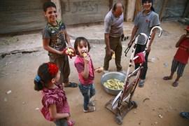 Siria.- Huertos escolares para combatir la malnutrición en Siria