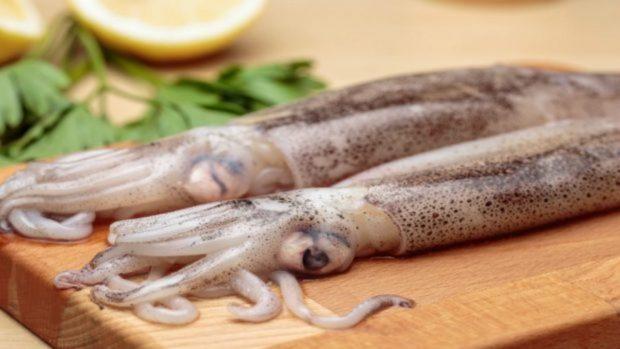 Resultado de imagen para limpieza de calamares